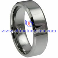 Faceted Tungsten Carbide Ring Picture